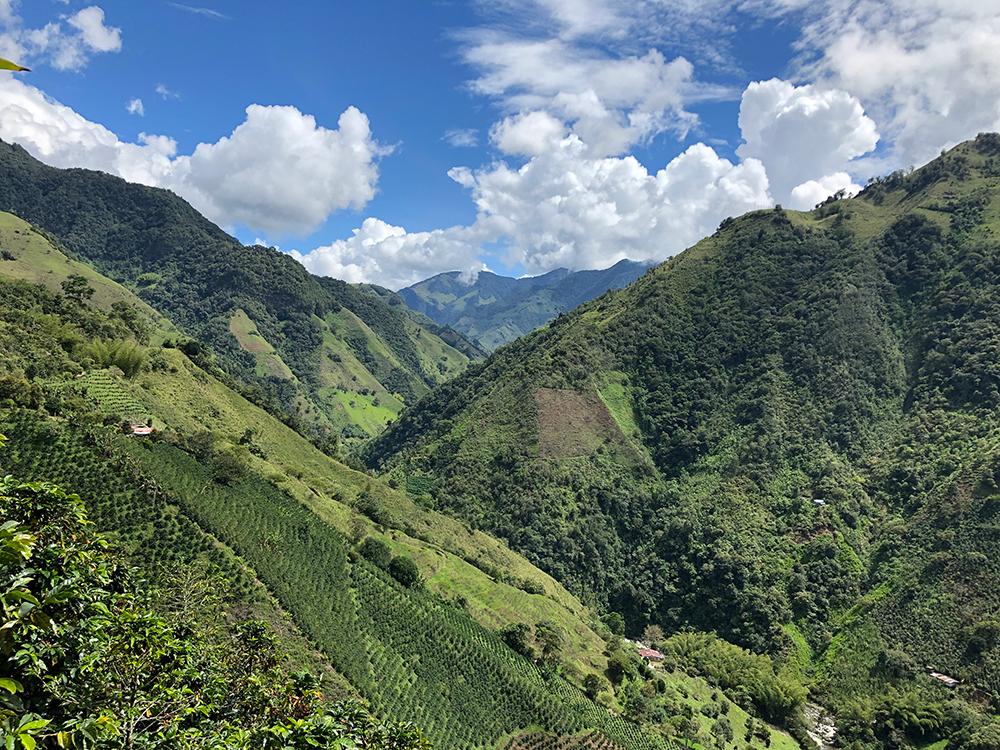 Colombia, Monte Bonito