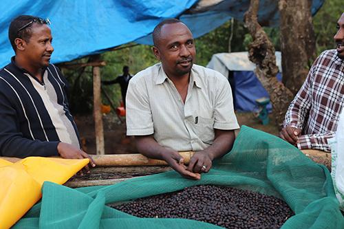 Mustafa Abakeno owner of coffee farm in Ethiopia